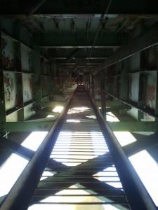 Vingio parko tiltas
